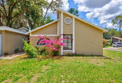1916 Gregory Drive Tampa FL 33613