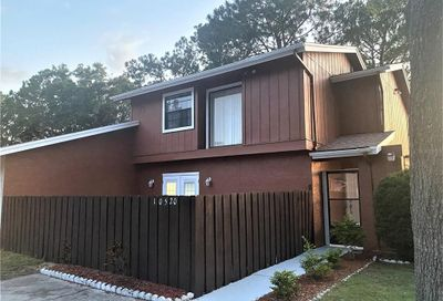 10520 Winrock Place Tampa FL 33624
