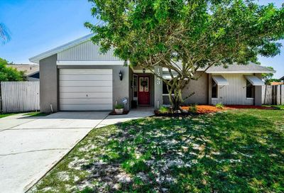 1243 Persimmon Drive Holiday FL 34691