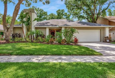 12104 Cypress Hollow Place Tampa FL 33624
