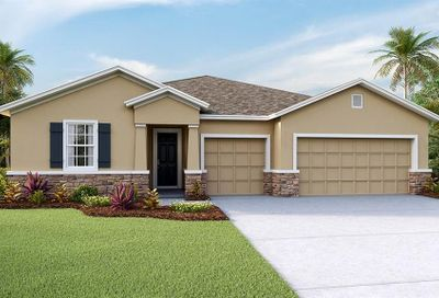 559 Spotted Slipper Place Ruskin FL 33570