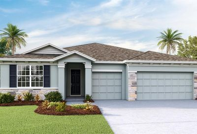 541 Spotted Slipper Place Ruskin FL 33570