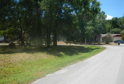 23734 Forest View Drive Land O Lakes FL 34639