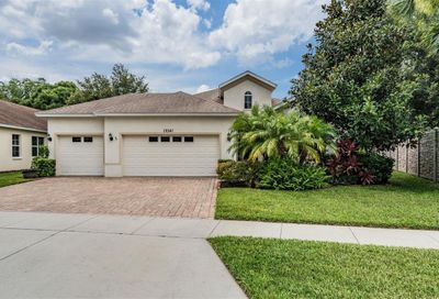 19341 Red Sky Court Land O Lakes FL 34638