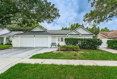 9204 Ruger Drive New Port Richey FL 34655