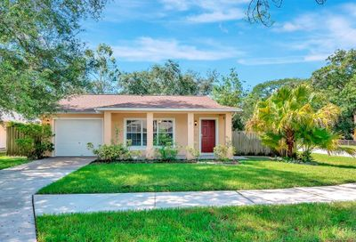 1120 Willow Pines Court E Tampa FL 33604