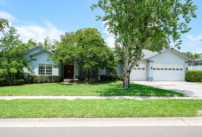 630 Belted Kingfisher Drive N Palm Harbor FL 34683