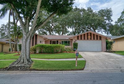 214 Meadowcross Drive Safety Harbor FL 34695