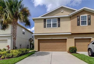 8839 Turnstone Haven Place Tampa FL 33619