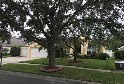 17734 Currie Ford Drive Lutz FL 33558