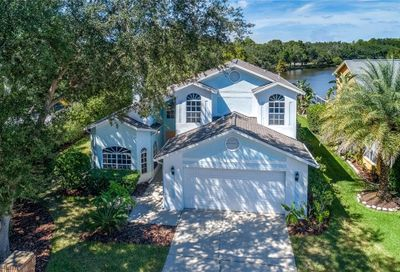 11519 Whispering Hollow Drive Tampa FL 33635
