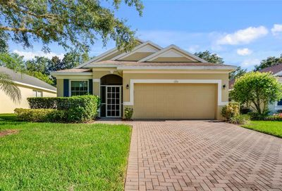 2339 Caledonian Street Clermont FL 34711