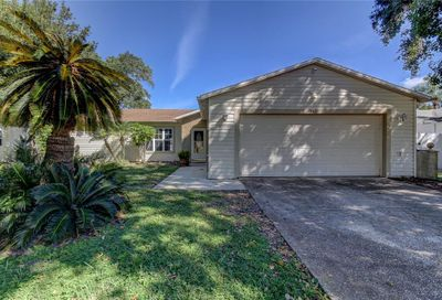103 Meadowcross Drive Safety Harbor FL 34695