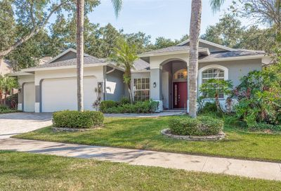 1704 Country Trails Drive Safety Harbor FL 34695