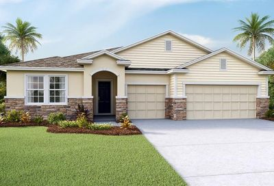 497 Spotted Slipper Place Ruskin FL 33570