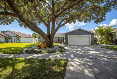 6602 Seafairer Drive Tampa FL 33615