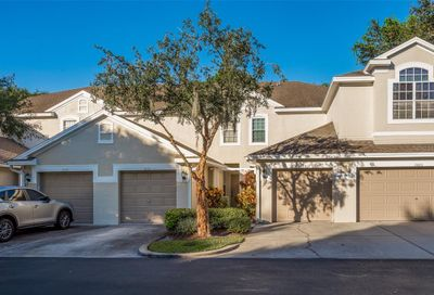 3661 Country Pointe Place Palm Harbor FL 34684