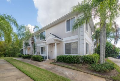18179 Paradise Point Drive Tampa FL 33647
