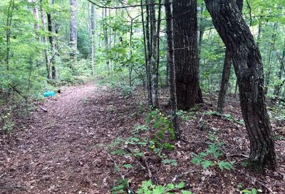 Lot #5 Old Yellow Branch Road Robbinsville NC 28771