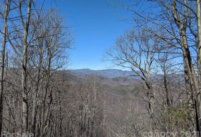 Lot T-66 23 Ninebark Lane Black Mountain NC 28711