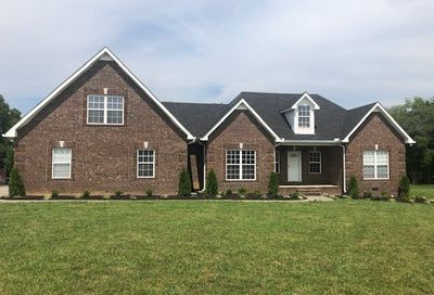 140 Glider Loop Eagleville TN 37060