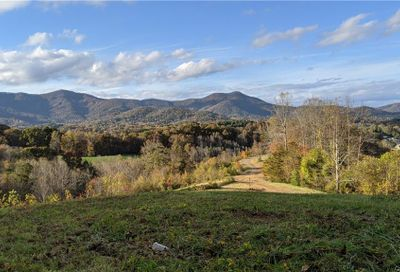 Lot #15 S Lindon Cove Road Candler NC 28715