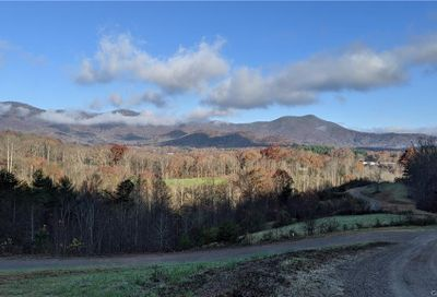 Lot #14 S Lindon Cove Road Candler NC 28715