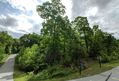 Lot #184 Catawba Falls Parkway Old Fort NC 28762