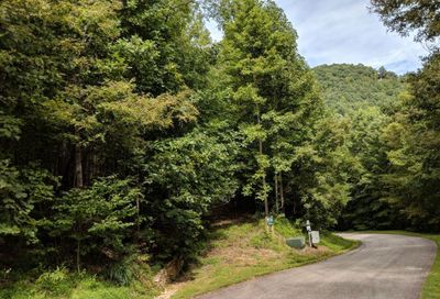 Lot T-64 153 Kestrel Ln Kestrel Lane Black Mountain NC 28711