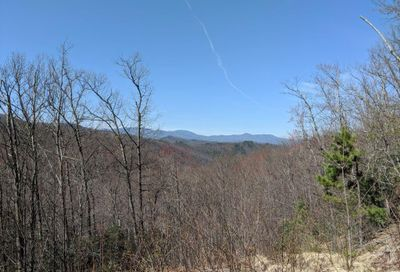 Lot T-14 403 N Haven Drive Black Mountain NC 28711