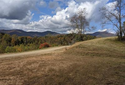 Lot #3 S Lindon Cove Road Candler NC 28715