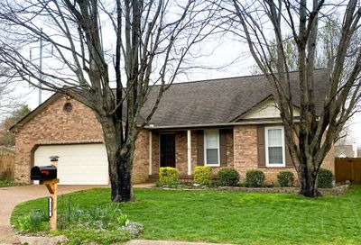 229 S Clematis Ct Franklin TN 37067