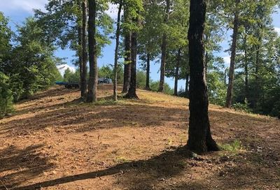 Lot 16 Jackson Cove Parkway Mill Spring NC 28756