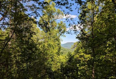 Lot C-11 28 Berry Lane Black Mountain NC 28711