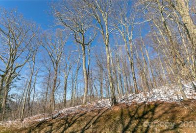 Lot 17 Old Growth Forest Road Burnsville NC 28714