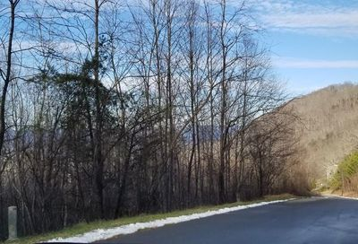 153 View Ridge Parkway Leicester NC 28748