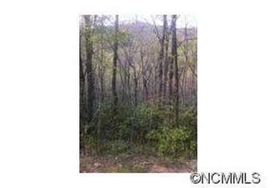 Lot 487 Maryland Place Place Montreat NC 28757