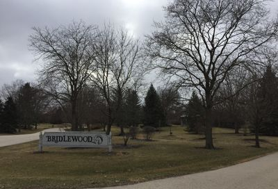 11 Bridlewood Trail South Barrington IL 60010