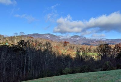 Lot #10 S Lindon Cove Road Candler NC 28715