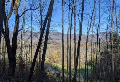 Lot #16 S Lindon Cove Road Candler NC 28715
