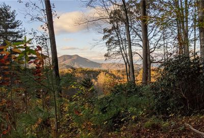 Lot #18 S Lindon Cove Road Candler NC 28715