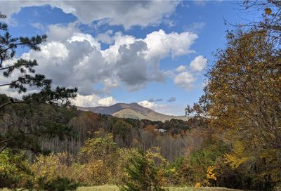 Lot #6 S Lindon Cove Road Candler NC 28715