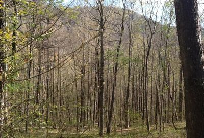 114 A Chimney Ridge Trail Waynesville NC 28786