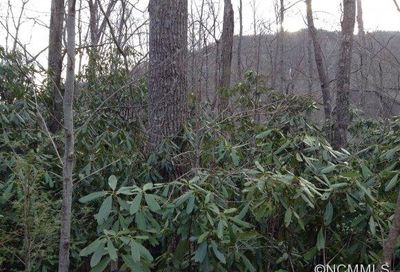 663 Lot Kentucky Road Montreat NC 28757