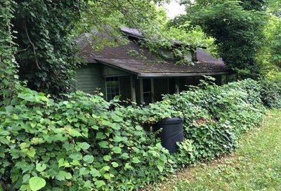 11 Elk Mountain Place Woodfin NC 28804