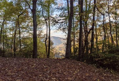 Lot #19 S Lindon Cove Road Candler NC 28715