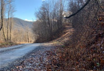 181 Bearwallow Trail Leicester NC 28748