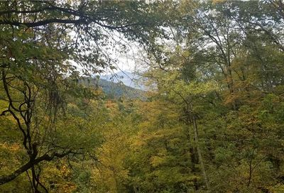 Lot 286 Running Deer Trail Waynesville NC 28786