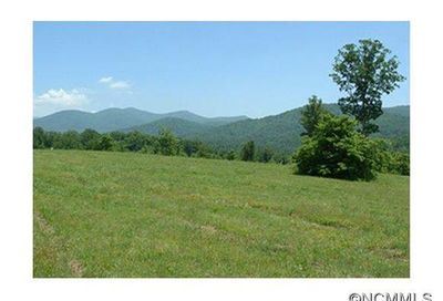 61 Governor Thomson Terrace Weaverville NC 28787