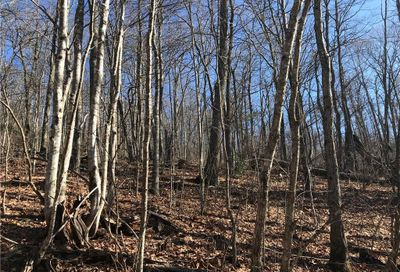Lot 16 Wildflower Cove Swannanoa NC 28778